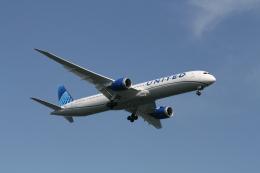 武田菱さんが、羽田空港で撮影したユナイテッド航空 787-10の航空フォト(飛行機 写真・画像)