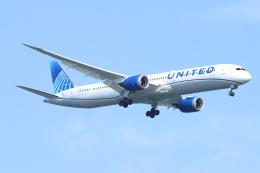 ceskykrumlovさんが、羽田空港で撮影したユナイテッド航空 787-10の航空フォト(飛行機 写真・画像)