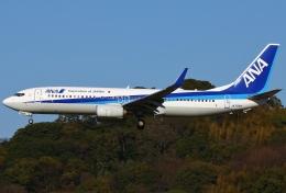 あしゅーさんが、福岡空港で撮影した全日空 737-881の航空フォト(飛行機 写真・画像)