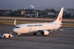 kumagorouさんが、松山空港で撮影した日本航空 737-846の航空フォト(飛行機 写真・画像)