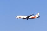 kikiさんが、成田国際空港で撮影した日本航空 787-8 Dreamlinerの航空フォト(飛行機 写真・画像)