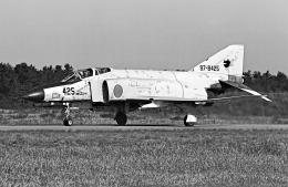 航空フォト:97-8425 航空自衛隊 F-4EJ Phantom II