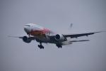 でこっぱち 15さんが、福岡空港で撮影した全日空 777-281/ERの航空フォト(飛行機 写真・画像)
