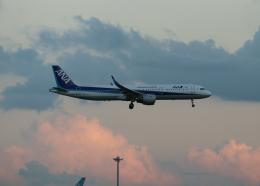 銀苺さんが、羽田空港で撮影した全日空 A321-211の航空フォト(飛行機 写真・画像)
