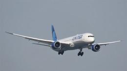 changさんが、羽田空港で撮影したユナイテッド航空 787-10の航空フォト(飛行機 写真・画像)