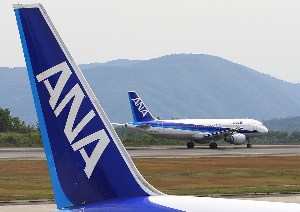 ふじいあきらさんの全日空 Airbus A320 (JA8396) 航空フォト