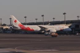 Hikobouzさんが、成田国際空港で撮影した日本航空 787-8 Dreamlinerの航空フォト(飛行機 写真・画像)
