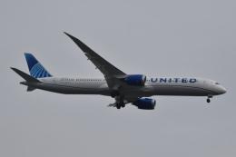 美月推しさんが、羽田空港で撮影したユナイテッド航空 787-10の航空フォト(飛行機 写真・画像)