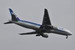 美月推しさんが、羽田空港で撮影した全日空 777-281の航空フォト(飛行機 写真・画像)
