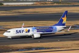 Hiro-hiroさんが、羽田空港で撮影したスカイマーク 737-81Dの航空フォト(飛行機 写真・画像)