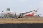 キイロイトリさんが、松島基地で撮影した日本航空 787-8 Dreamlinerの航空フォト(飛行機 写真・画像)