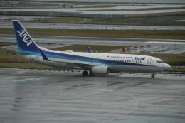 武田菱さんが、那覇空港で撮影した全日空 737-881の航空フォト(飛行機 写真・画像)