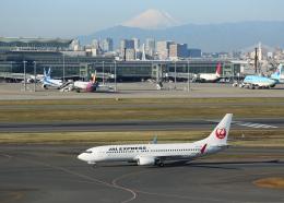 銀苺さんが、羽田空港で撮影したJALエクスプレス 737-846の航空フォト(飛行機 写真・画像)