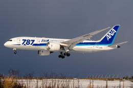 Ariesさんが、函館空港で撮影した全日空 787-8 Dreamlinerの航空フォト(飛行機 写真・画像)