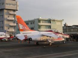 M.Ochiaiさんが、新田原基地で撮影した航空自衛隊 T-4の航空フォト(飛行機 写真・画像)