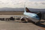 uhfxさんが、関西国際空港で撮影した大韓航空 737-9B5の航空フォト(飛行機 写真・画像)