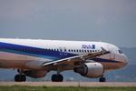 WING_ACEさんが、仙台空港で撮影した全日空 A320-211の航空フォト(飛行機 写真・画像)
