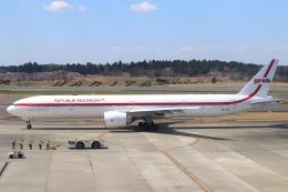 パピヨンさんが、成田国際空港で撮影したガルーダ・インドネシア航空 777-3U3/ERの航空フォト(飛行機 写真・画像)