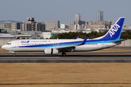 きんめいさんが、伊丹空港で撮影した全日空 737-881の航空フォト(飛行機 写真・画像)