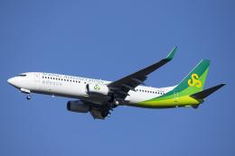 SGR RT 改さんが、成田国際空港で撮影した春秋航空日本 737-8ALの航空フォト(飛行機 写真・画像)