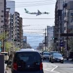 でこっぱち 15さんが、福岡空港で撮影したエバー航空 A330-302Xの航空フォト(飛行機 写真・画像)