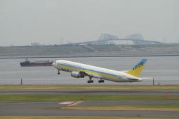 TAK_HND_NRTさんが、羽田空港で撮影したAIR DO 767-33A/ERの航空フォト(飛行機 写真・画像)