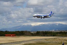 だだちゃ豆さんが、庄内空港で撮影した全日空 737-881の航空フォト(飛行機 写真・画像)
