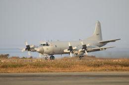 mocohide☆さんが、築城基地で撮影した海上自衛隊 P-3Cの航空フォト(飛行機 写真・画像)