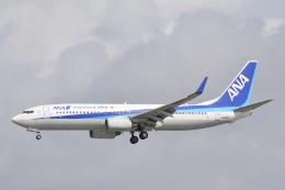 LEGACY-747さんが、那覇空港で撮影した全日空 737-881の航空フォト(飛行機 写真・画像)