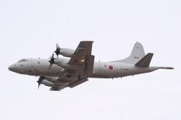 MH-38Rさんが、八戸航空基地で撮影した海上自衛隊 P-3Cの航空フォト(飛行機 写真・画像)
