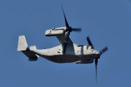 NFファンさんが、厚木飛行場で撮影したアメリカ海兵隊 MV-22Bの航空フォト(飛行機 写真・画像)