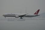 LEGACY-747さんが、香港国際空港で撮影したターキッシュ・エアラインズ 777-3F2/ERの航空フォト(飛行機 写真・画像)