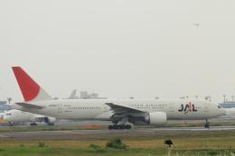 TAK_HND_NRTさんが、成田国際空港で撮影した日本航空 777-246/ERの航空フォト(飛行機 写真・画像)