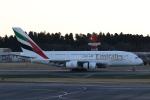 ANA744Foreverさんが、成田国際空港で撮影したエミレーツ航空 A380-861の航空フォト(飛行機 写真・画像)