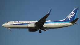 H.Chobyさんが、福岡空港で撮影した全日空 737-881の航空フォト(飛行機 写真・画像)