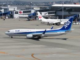 エアキンさんが、中部国際空港で撮影した全日空 737-881の航空フォト(飛行機 写真・画像)