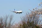まいけるさんが、成田国際空港で撮影したユナイテッド航空 737-824の航空フォト(飛行機 写真・画像)