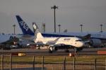 Nosuriさんが、成田国際空港で撮影したオーロラ A319-111の航空フォト(飛行機 写真・画像)