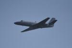 kumagorouさんが、嘉手納飛行場で撮影したアメリカ海兵隊 UC-35D Citation Encore (560)の航空フォト(飛行機 写真・画像)