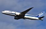 鉄バスさんが、成田国際空港で撮影した全日空 787-8 Dreamlinerの航空フォト(飛行機 写真・画像)