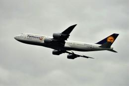 レドームさんが、羽田空港で撮影したルフトハンザドイツ航空 747-830の航空フォト(飛行機 写真・画像)