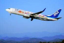 yoshibouさんが、静岡空港で撮影した全日空 737-881の航空フォト(飛行機 写真・画像)