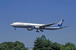Gambardierさんが、伊丹空港で撮影した全日空 777-381の航空フォト(飛行機 写真・画像)