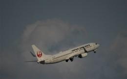 こびとさんさんが、羽田空港で撮影した日本航空 737-846の航空フォト(飛行機 写真・画像)