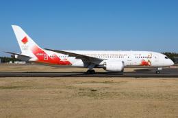 sky-spotterさんが、成田国際空港で撮影した日本航空 787-8 Dreamlinerの航空フォト(飛行機 写真・画像)