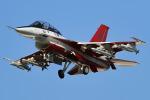 木曽路さんが、岐阜基地で撮影した航空自衛隊 F-2Bの航空フォト(飛行機 写真・画像)