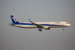 けいとパパさんが、羽田空港で撮影した全日空 A321-211の航空フォト(飛行機 写真・画像)