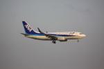 けいとパパさんが、羽田空港で撮影した全日空 737-781の航空フォト(飛行機 写真・画像)