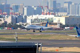 まいけるさんが、羽田空港で撮影したユナイテッド航空 787-10の航空フォト(飛行機 写真・画像)