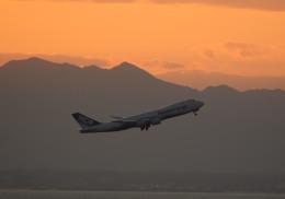 長月ぽっぷさんが、中部国際空港で撮影した日本貨物航空 747-8KZF/SCDの航空フォト(飛行機 写真・画像)